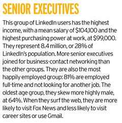 Senior executives land on LinkedIn to enhance their business network